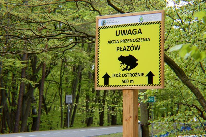 Woliński Park Narodowy z projektem Zachować bioróżnorodność